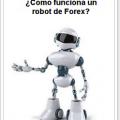 que es y como funciona un robot forex