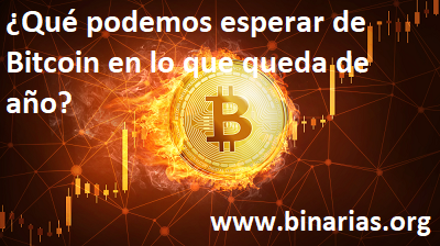 Bitcoin Price Free