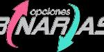 Binarias.org logo Footer